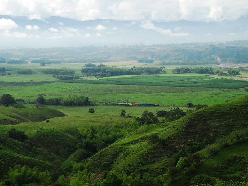 Valley Maravelez in La Tebaida Quindío