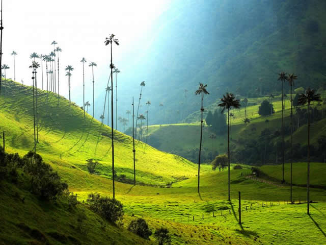 Salento Quindio The Father Town To Visit And Its Tourist Sites
