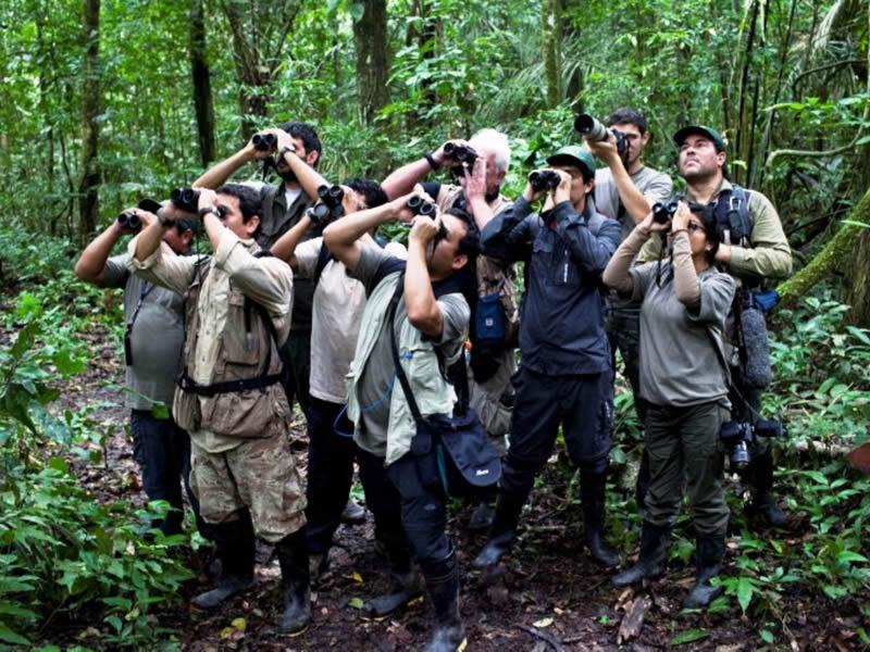 Lugar de avistamiento de aves en Filandia