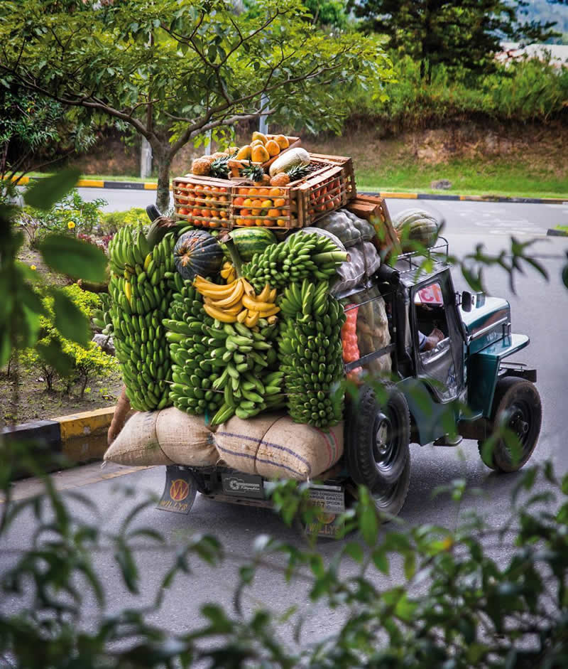 Yipao con transporte de productos agrícolas